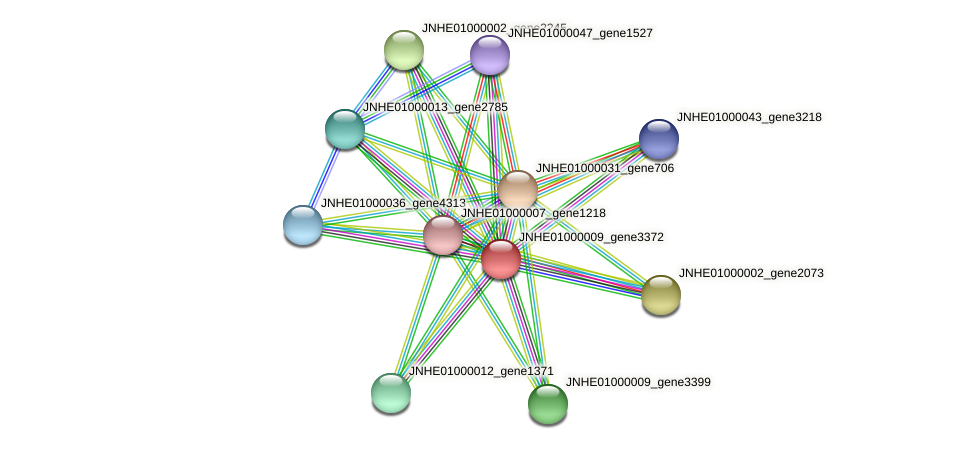 JNHE01000009_gene3372 protein (Pseudomonas oleovorans) - STRING interaction network