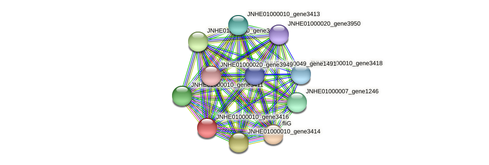 JNHE01000010_gene3416 protein (Pseudomonas oleovorans) - STRING interaction network