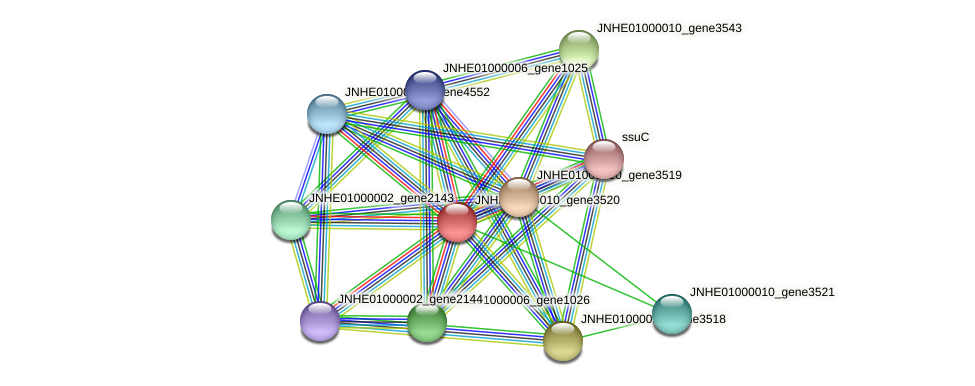 JNHE01000010_gene3520 protein (Pseudomonas oleovorans) - STRING interaction network