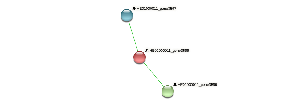 JNHE01000011_gene3596 protein (Pseudomonas oleovorans) - STRING interaction network