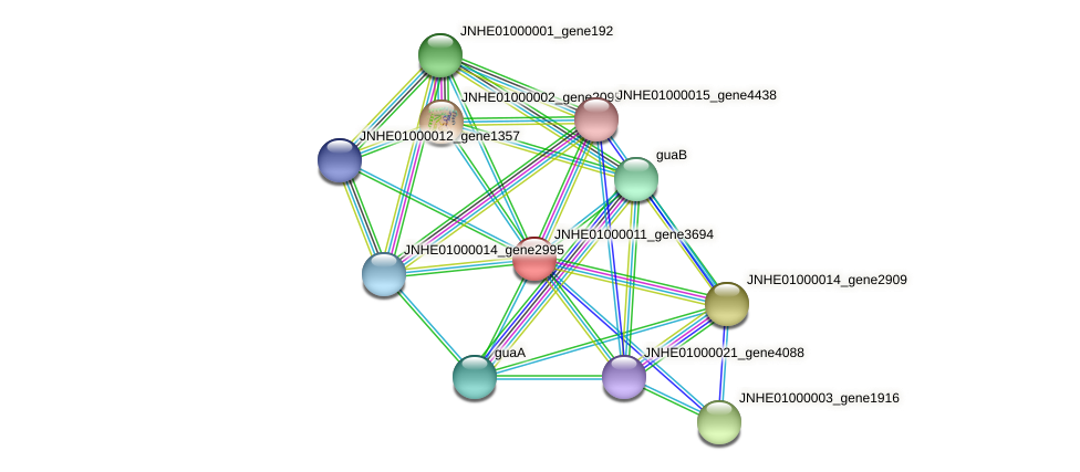 JNHE01000011_gene3694 protein (Pseudomonas oleovorans) - STRING interaction network