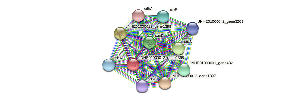 JNHE01000012_gene1398 protein (Pseudomonas oleovorans) - STRING interaction network