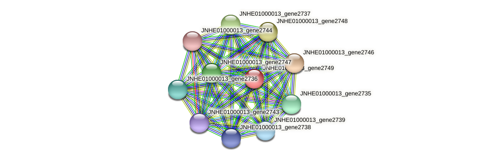 JNHE01000013_gene2749 protein (Pseudomonas oleovorans) - STRING interaction network