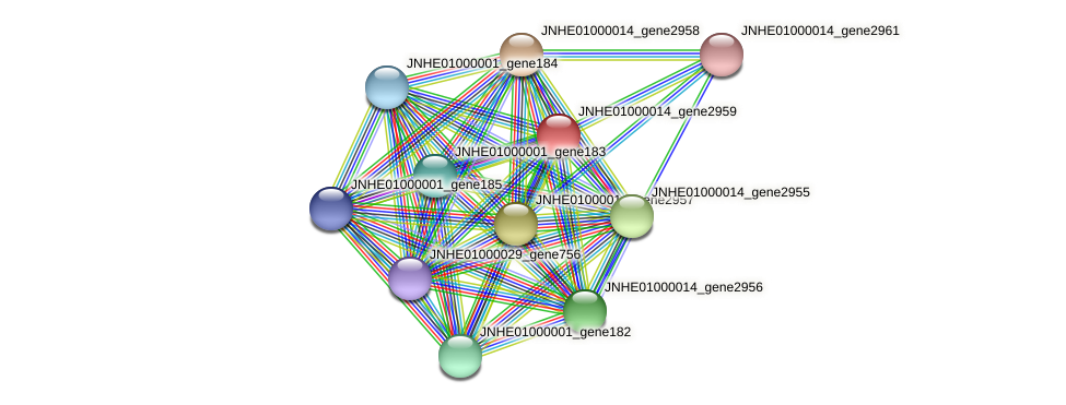 JNHE01000014_gene2959 protein (Pseudomonas oleovorans) - STRING interaction network