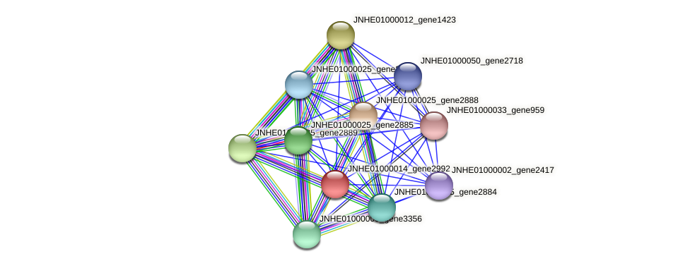 JNHE01000014_gene2992 protein (Pseudomonas oleovorans) - STRING interaction network