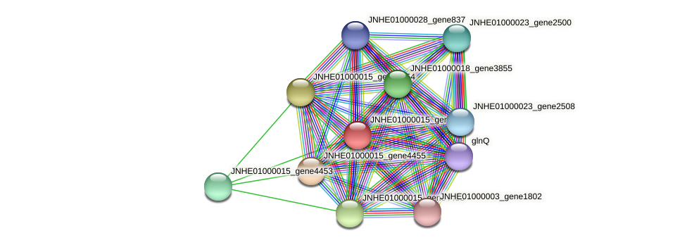 JNHE01000015_gene4457 protein (Pseudomonas oleovorans) - STRING interaction network