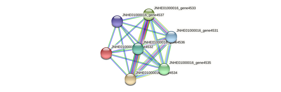 JNHE01000016_gene4532 protein (Pseudomonas oleovorans) - STRING interaction network