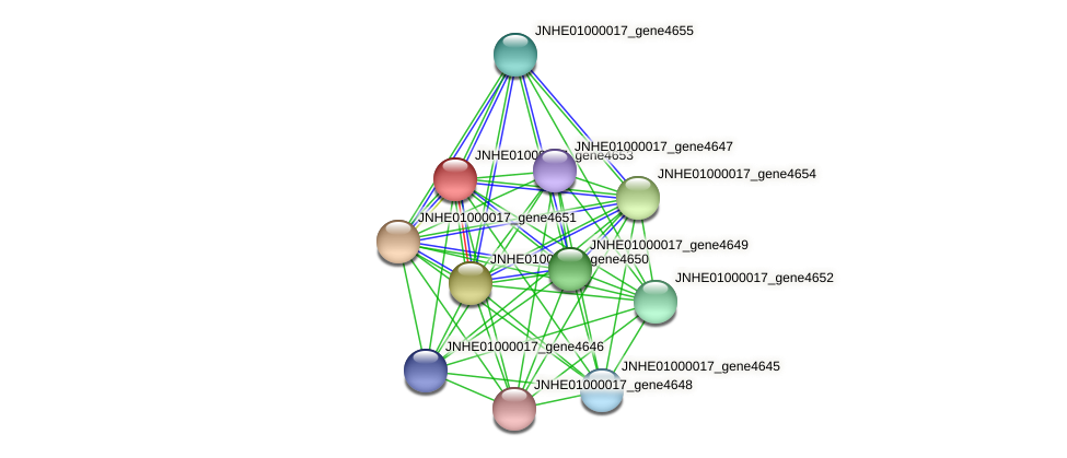 JNHE01000017_gene4653 protein (Pseudomonas oleovorans) - STRING interaction network