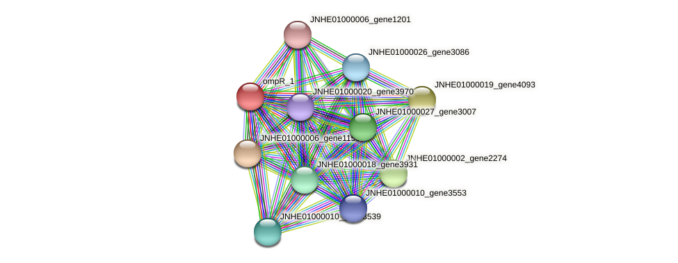 JNHE01000019_gene4092 protein (Pseudomonas oleovorans) - STRING interaction network