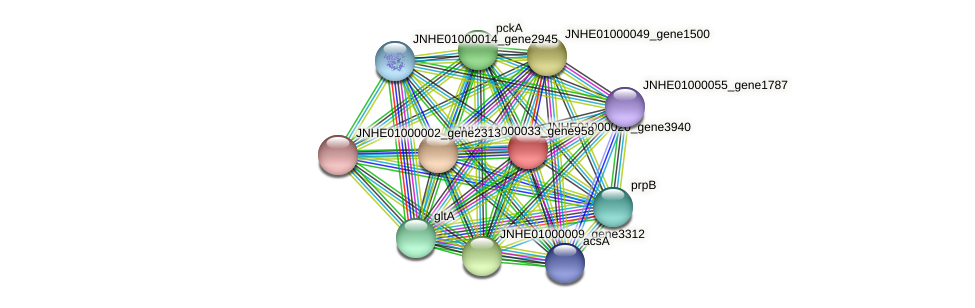 JNHE01000020_gene3940 protein (Pseudomonas oleovorans) - STRING interaction network