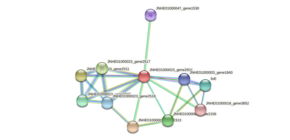 JNHE01000023_gene2504 protein (Pseudomonas oleovorans) - STRING interaction network