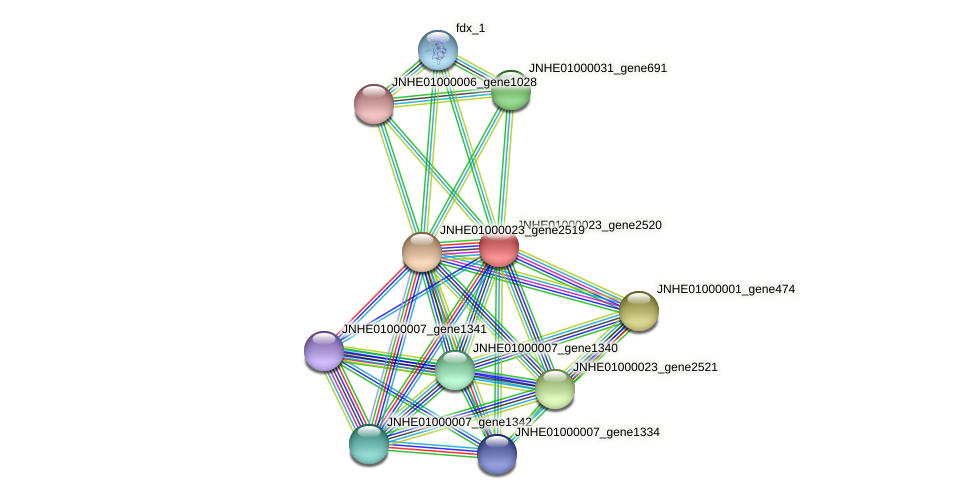 JNHE01000023_gene2520 protein (Pseudomonas oleovorans) - STRING interaction network