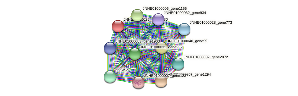 JNHE01000025_gene2830 protein (Pseudomonas oleovorans) - STRING interaction network