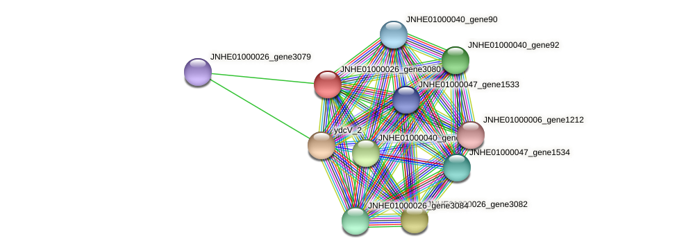 JNHE01000026_gene3080 protein (Pseudomonas oleovorans) - STRING interaction network