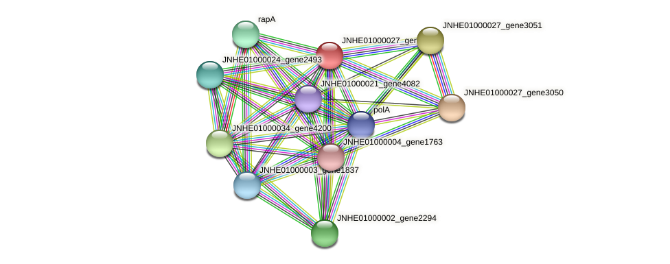 JNHE01000027_gene3052 protein (Pseudomonas oleovorans) - STRING interaction network