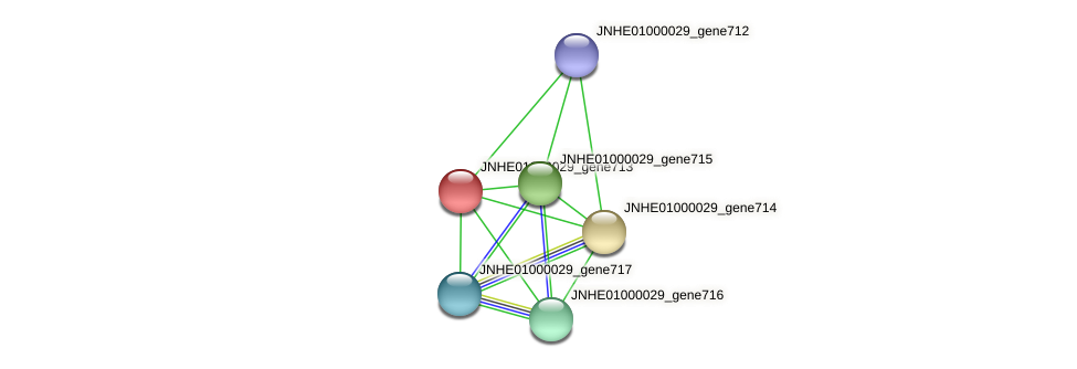 JNHE01000029_gene713 protein (Pseudomonas oleovorans) - STRING interaction network