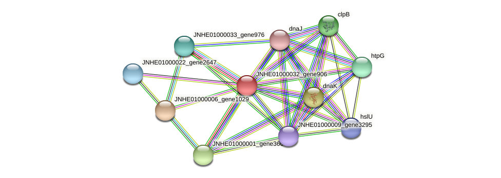 JNHE01000032_gene906 protein (Pseudomonas oleovorans) - STRING interaction network