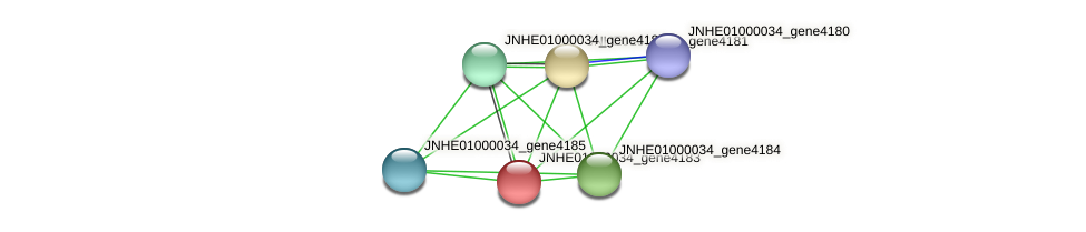 JNHE01000034_gene4183 protein (Pseudomonas oleovorans) - STRING interaction network
