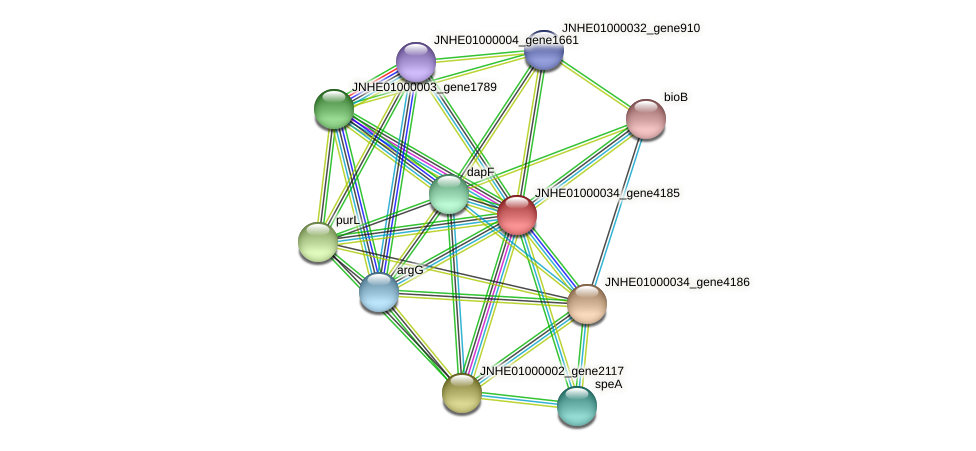 JNHE01000034_gene4185 protein (Pseudomonas oleovorans) - STRING interaction network