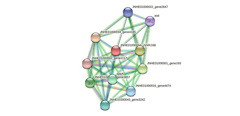 JNHE01000034_gene4186 protein (Pseudomonas oleovorans) - STRING interaction network