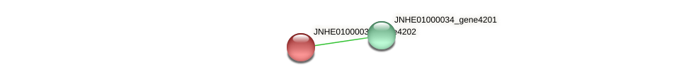 JNHE01000034_gene4202 protein (Pseudomonas oleovorans) - STRING interaction network
