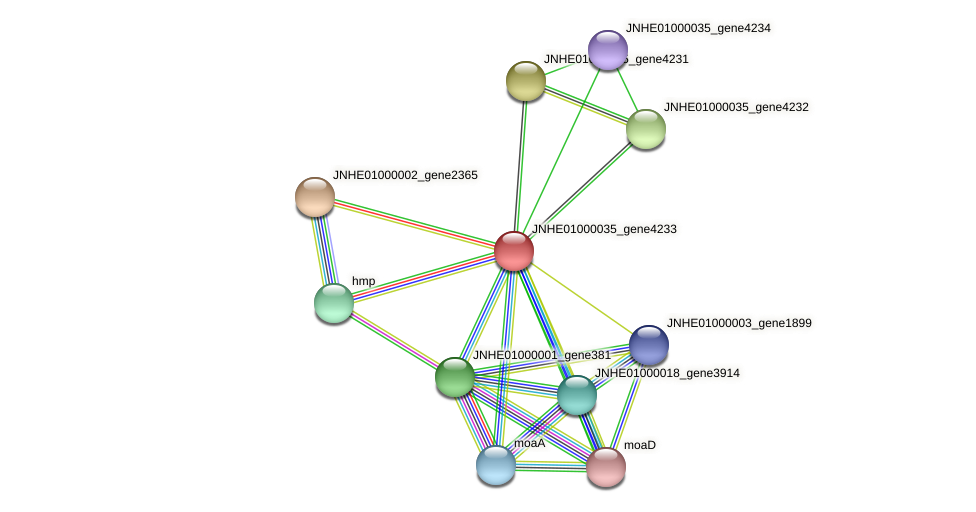 JNHE01000035_gene4233 protein (Pseudomonas oleovorans) - STRING interaction network