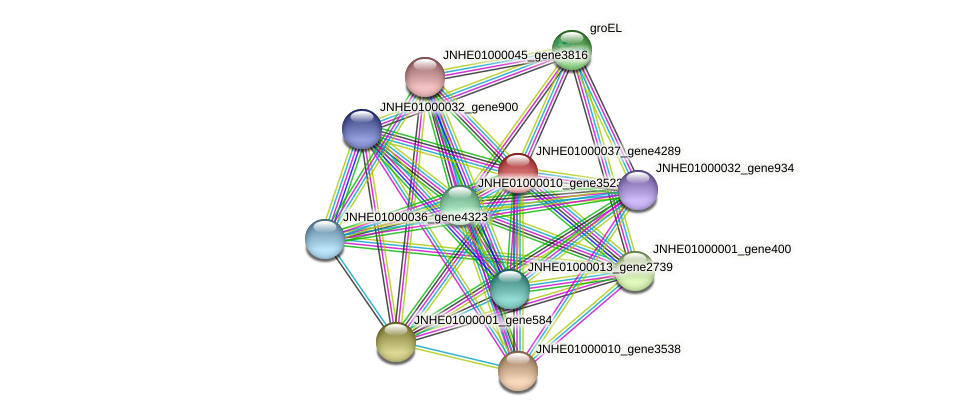 JNHE01000037_gene4289 protein (Pseudomonas oleovorans) - STRING interaction network