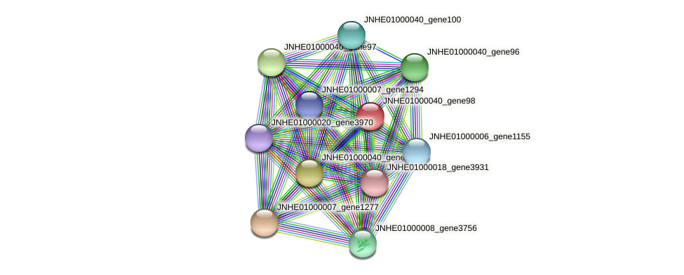 JNHE01000040_gene98 protein (Pseudomonas oleovorans) - STRING interaction network