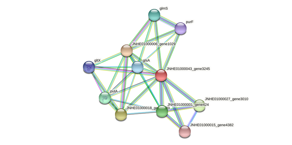 JNHE01000043_gene3245 protein (Pseudomonas oleovorans) - STRING interaction network