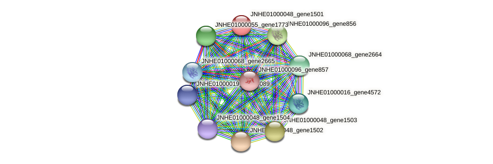 JNHE01000048_gene1501 protein (Pseudomonas oleovorans) - STRING interaction network