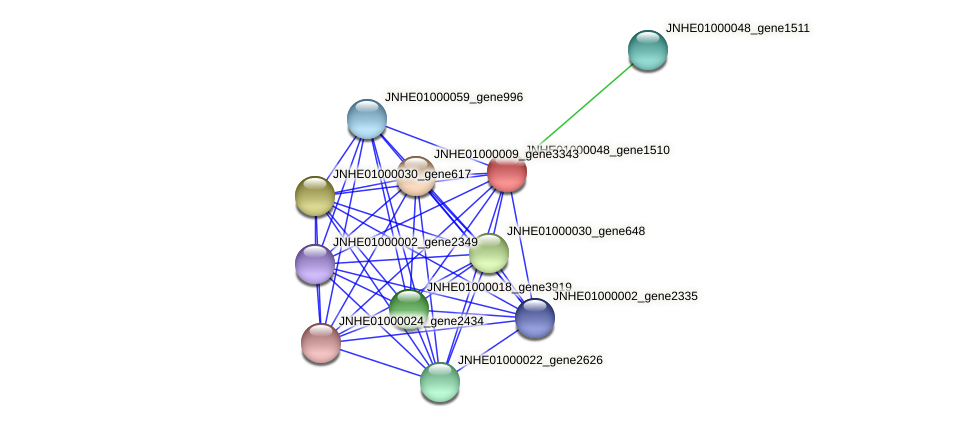 JNHE01000048_gene1510 protein (Pseudomonas oleovorans) - STRING interaction network