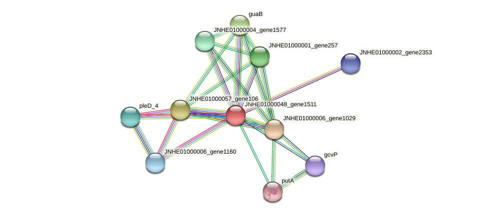 JNHE01000048_gene1511 protein (Pseudomonas oleovorans) - STRING interaction network