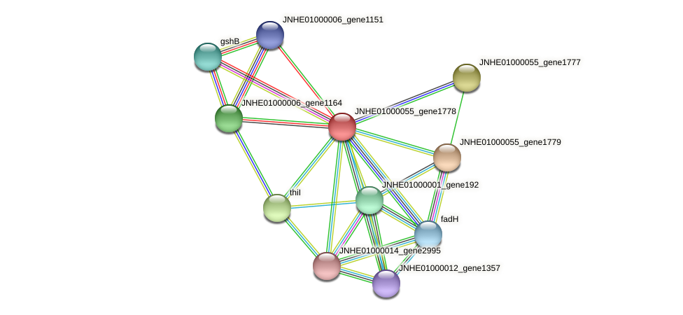 JNHE01000055_gene1778 protein (Pseudomonas oleovorans) - STRING interaction network