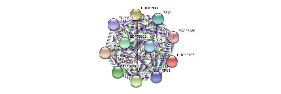 EDO95757 protein (Chlamydomonas reinhardtii) - STRING interaction network