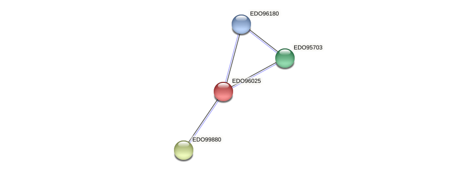 EDO96025 protein (Chlamydomonas reinhardtii) - STRING interaction network