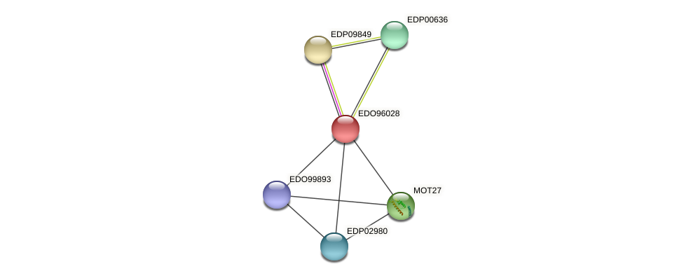 EDO96028 protein (Chlamydomonas reinhardtii) - STRING interaction network