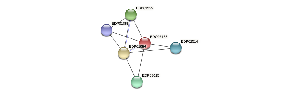 EDO96138 protein (Chlamydomonas reinhardtii) - STRING interaction network