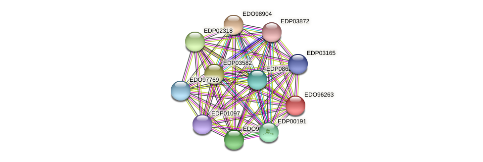 EDO96263 protein (Chlamydomonas reinhardtii) - STRING interaction network