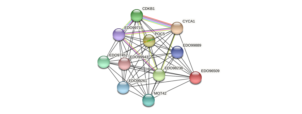 EDO96509 protein (Chlamydomonas reinhardtii) - STRING interaction network