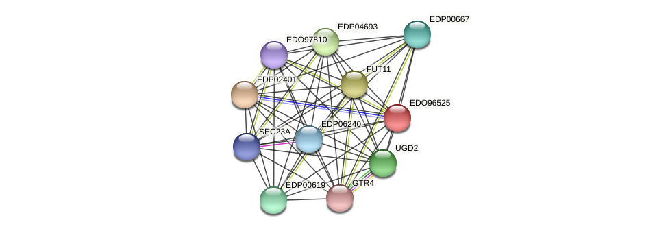 EDO96525 protein (Chlamydomonas reinhardtii) - STRING interaction network