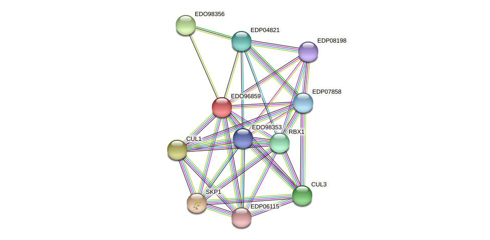 EDO96859 protein (Chlamydomonas reinhardtii) - STRING interaction network