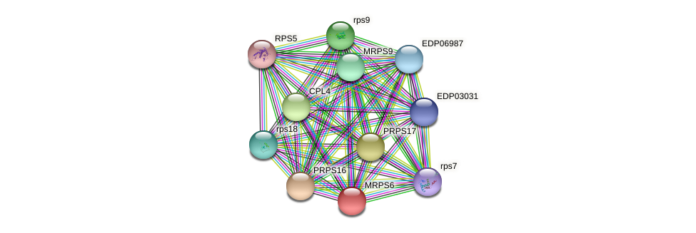 MRPS6 protein (Chlamydomonas reinhardtii) - STRING interaction network