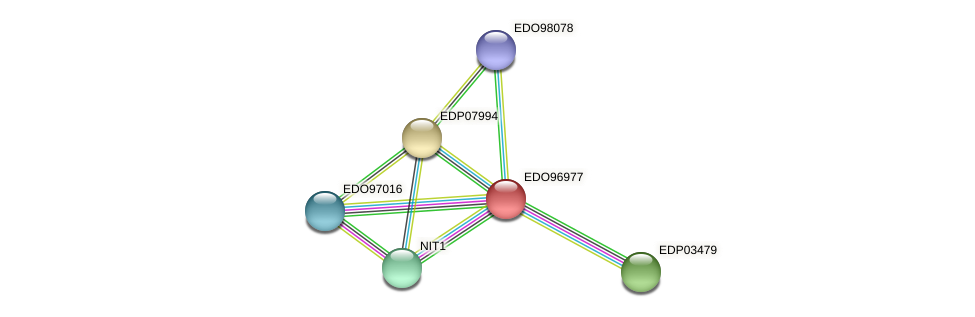 EDO96977 protein (Chlamydomonas reinhardtii) - STRING interaction network