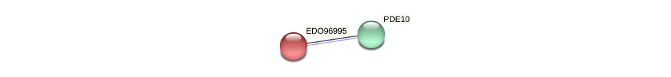 EDO96995 protein (Chlamydomonas reinhardtii) - STRING interaction network