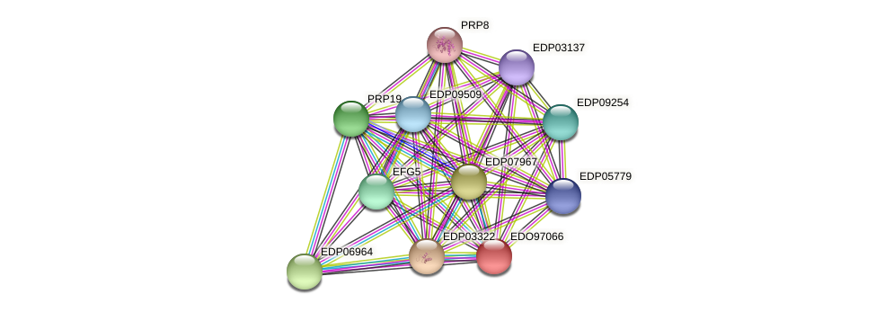 EDO97066 protein (Chlamydomonas reinhardtii) - STRING interaction network
