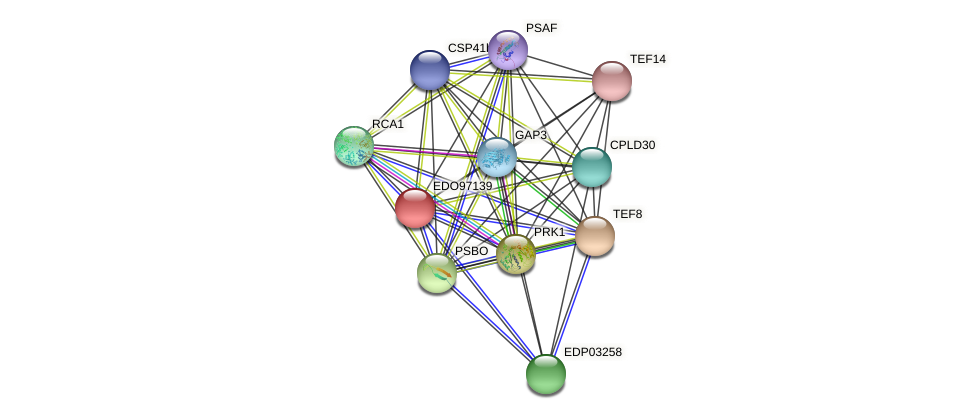 EDO97139 protein (Chlamydomonas reinhardtii) - STRING interaction network