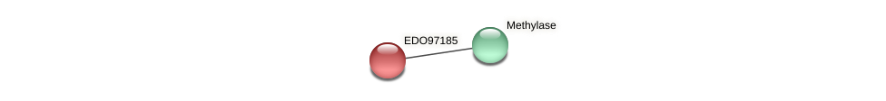 EDO97185 protein (Chlamydomonas reinhardtii) - STRING interaction network