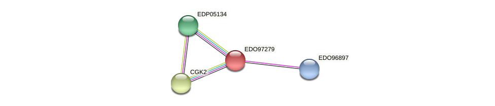 EDO97279 protein (Chlamydomonas reinhardtii) - STRING interaction network