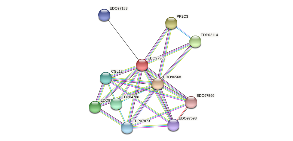 EDO97363 protein (Chlamydomonas reinhardtii) - STRING interaction network