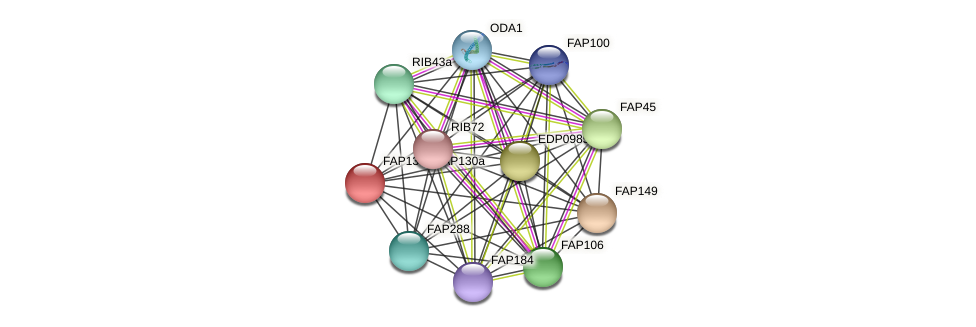 FAP130a protein (Chlamydomonas reinhardtii) - STRING interaction network